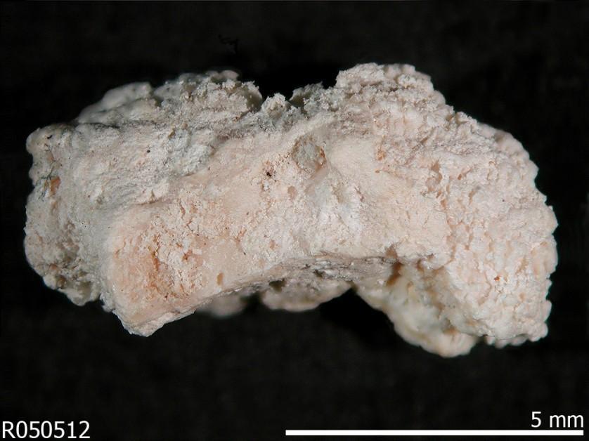 minerais perigosos 8