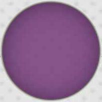 10 urina roxa lilas