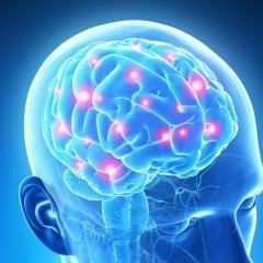 Cientistas inventam decodificador do cérebro que pode ler seus pensamentos íntimos