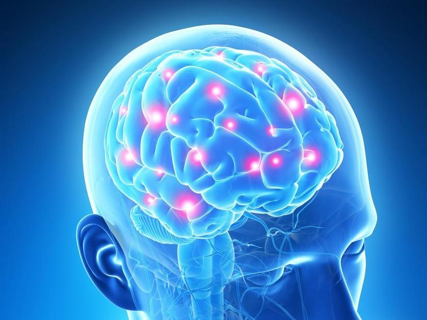 cervello decoder