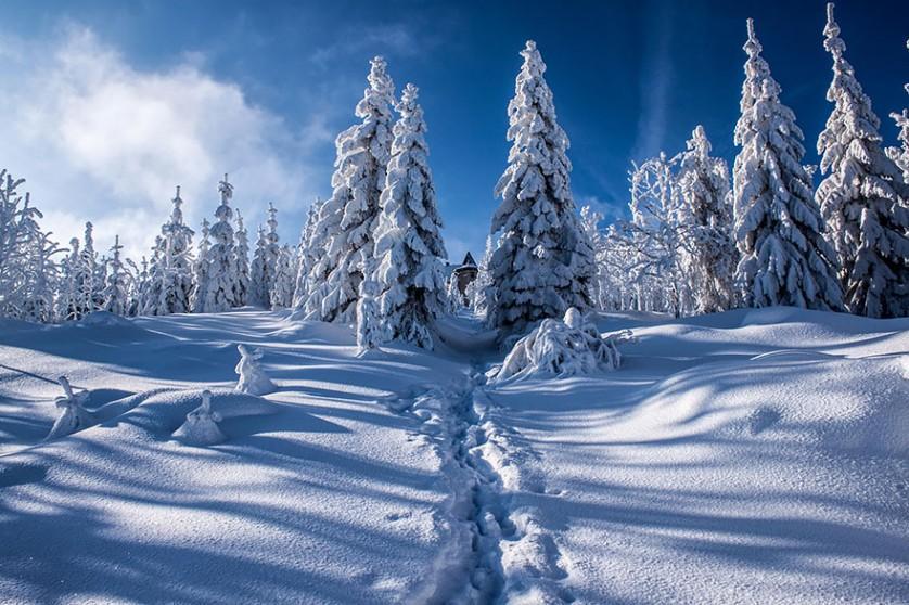 casas-solitarias-cobertas-de-neve-34