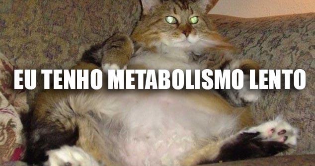 5 mentiras que todos acreditam sobre o metabolismo