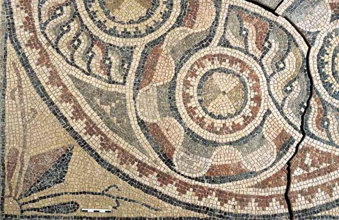 mosaicos gregos romanos antigos Turquia (14)