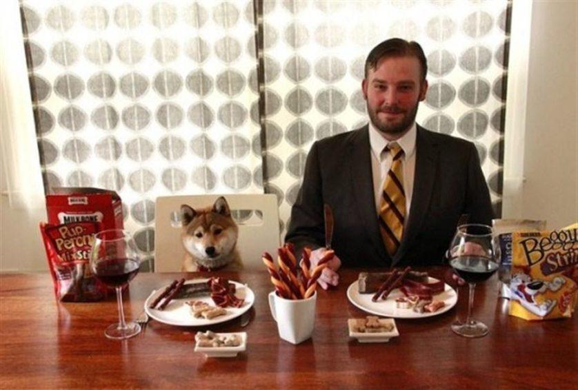 degustador comida de cachorro