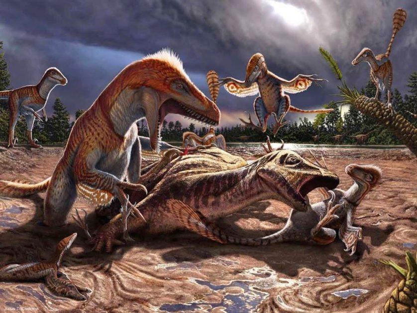 Esta imagem faz um esforço para restaurar alguns dos eventos que levaram à criação de um grande bloco de arenito altamente fossilífero (contendo utahráptors de uma gama de estádios ontogenéticos e [dinossauros do gênero] Hippodraco) do Cretáceo, no que é hoje Utah (EUA).