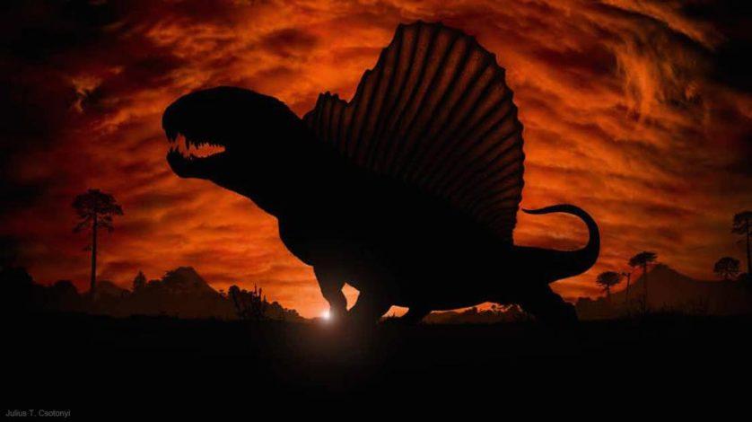 """Uma das duas imagens de marketing criadas para a exposição da Gondwana Studios """"Monstros do Permiano: A vida antes dos dinossauros"""". Esta imagem mostra um dimetrodon solitário pronto para começar a tomar sol em uma manhã no início do Permiano."""