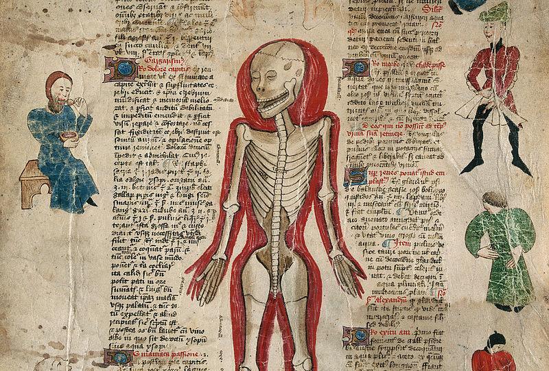 idade media vida medieval 8