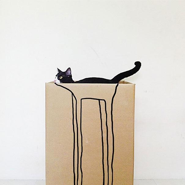gatos camuflagem (37)