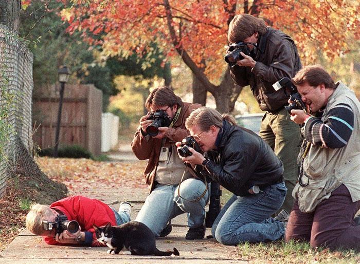 fotografos loucos corajosos (15)