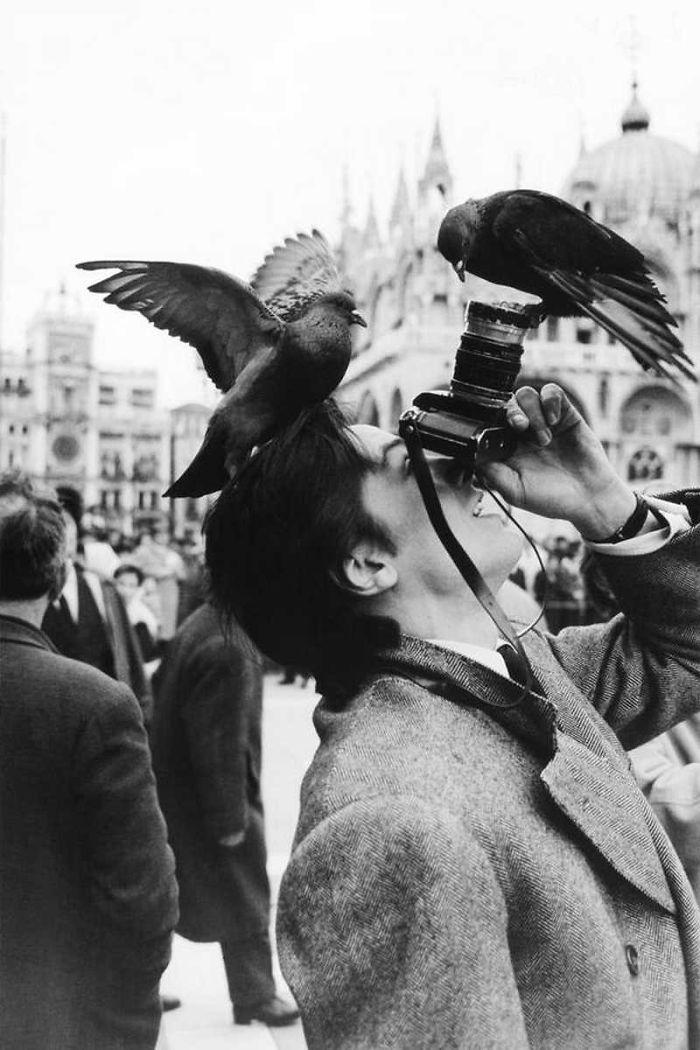 fotografos loucos corajosos (31)