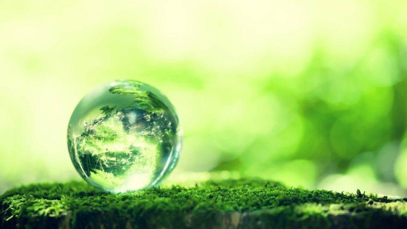 mundo verde vegetacao aumenta
