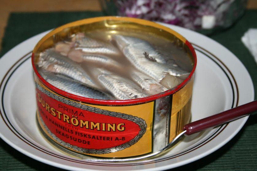 pratos peixe assustadores 2