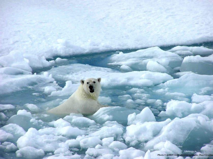 eventos climaticos aquecimento global 1