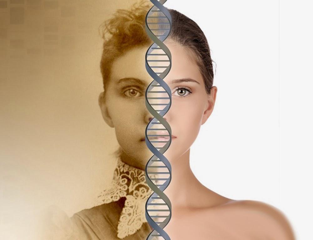 genetica com: