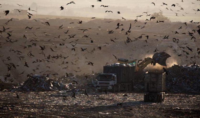 lixo meio ambiente 5