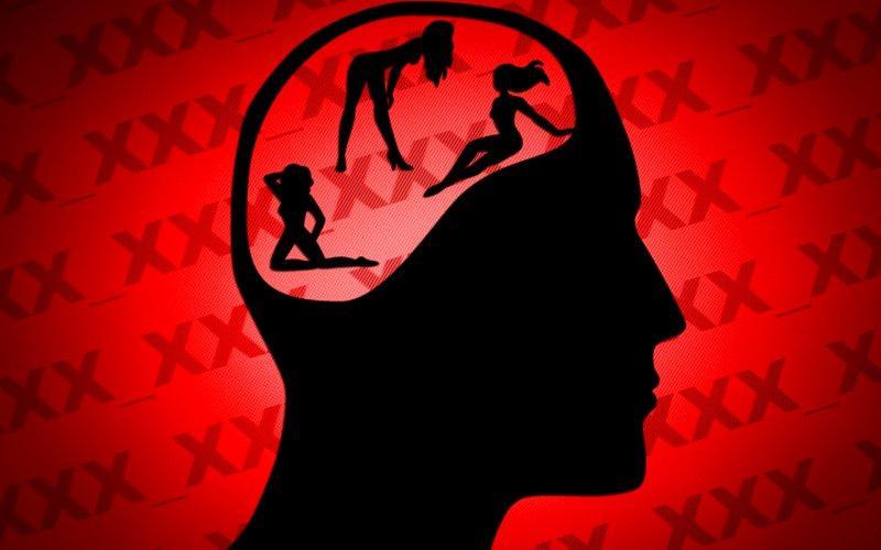 pornografia cerebro