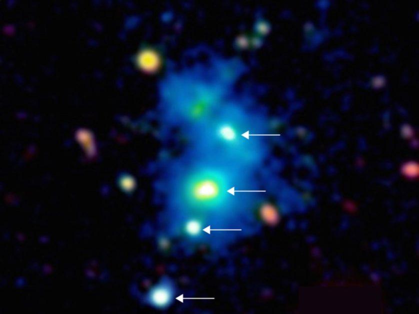 quasar quadruplo