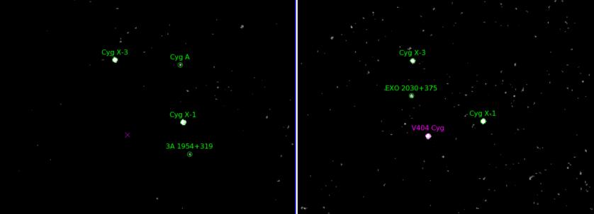 Estas imagens mostram o pedaço do céu onde o sistema binário V404 Cygni está localizado