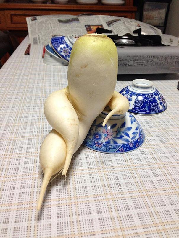 frutas e legumes que parecem outra coisa 10