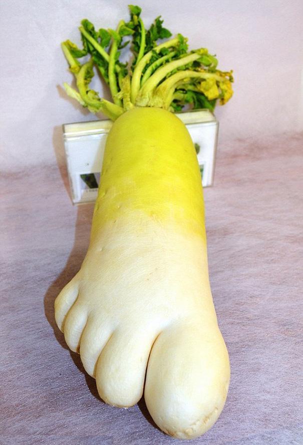 frutas e legumes que parecem outra coisa 7