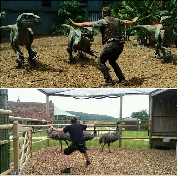 Por Jon Ovens, do Longleat Safari Park (Reino Unido)