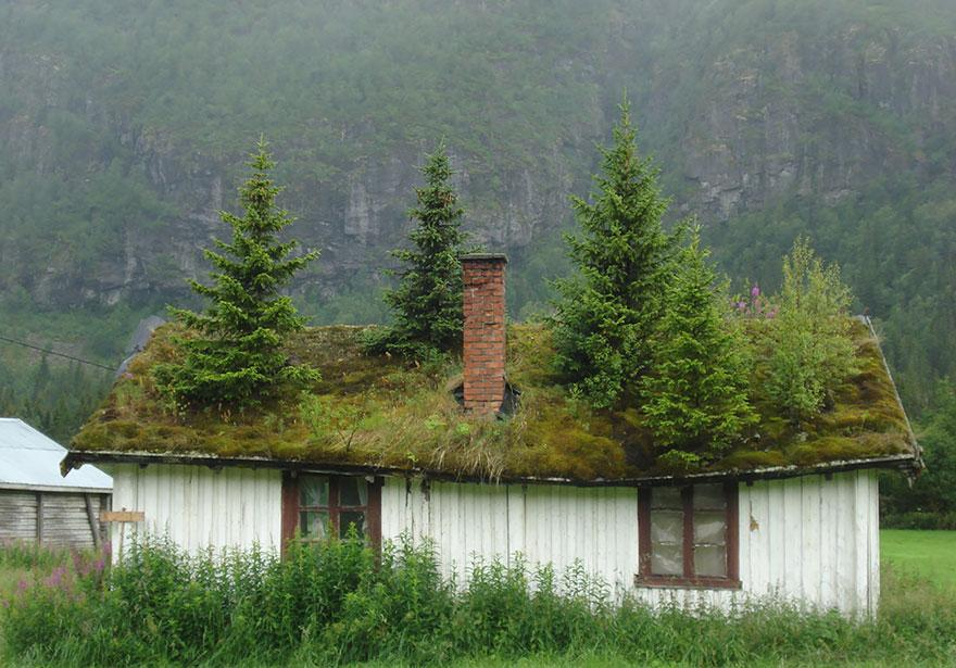 20 fotos da arquitetura norueguesa que lembram contos de fadas for Casas en noruega