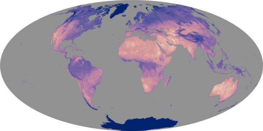 História da Terra bizarrices da antiga Terra 4