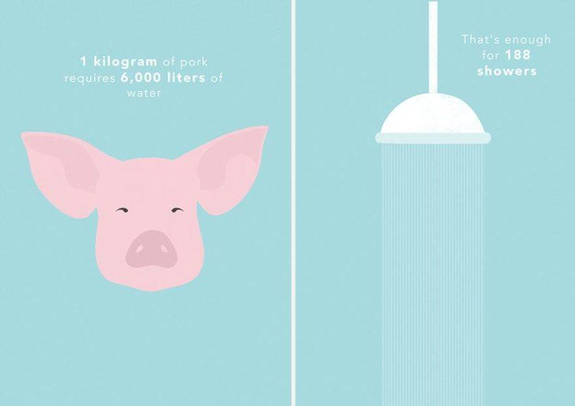 1 kg de carne de porco requer cerca de 6.000 litros de água, o suficiente para 188 chuveiradas