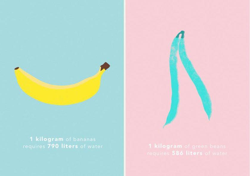 1 kg de banana requer cerca de 790 litros de água, e 1 kg de vagem requer cerca de 586 litros de água