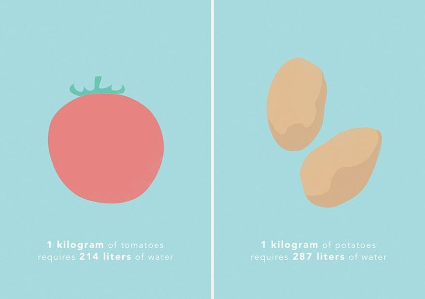 1 kg de tomate requer cerca de 214 litros de água, e 1 kg de batata requer cerca de 287 litros de água