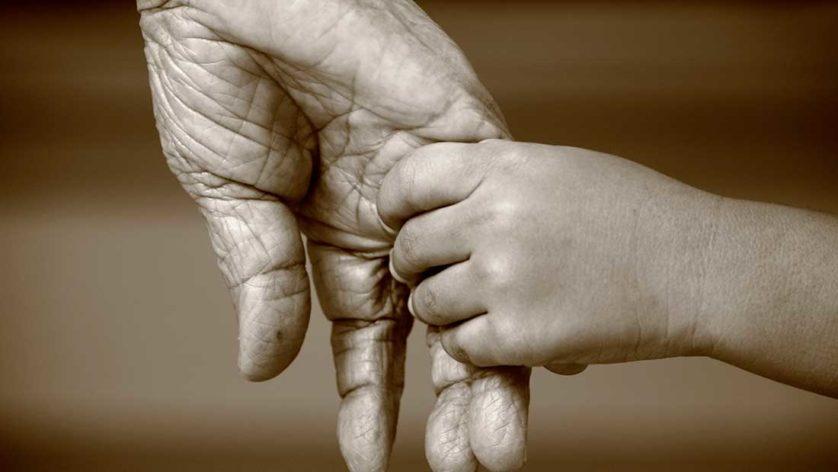 familias no futuro 2