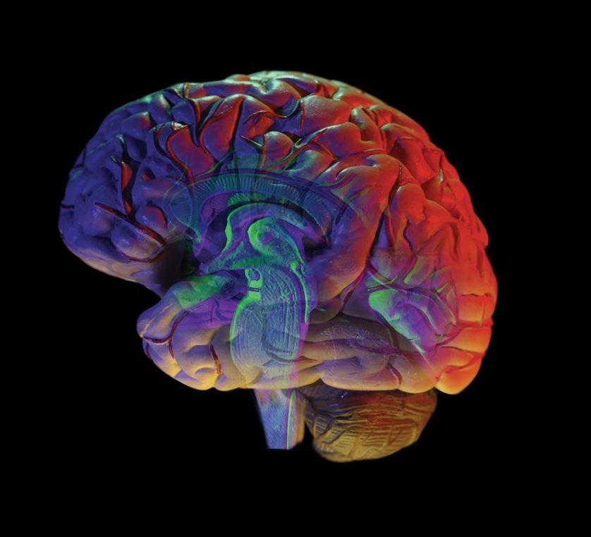 cirurgia cerebral 3
