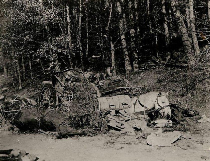 Na sequência de um ataque de artilharia norte-americano contra um comboio alemão, cavalos mortos, veículos e equipamentos destruídos podem ser vistos espalhados ao longo da estrada nas proximidades de Lug, na Alemanha. Os alemães estavam tentando escapar do cerco dos 3º e 7º Exércitos.