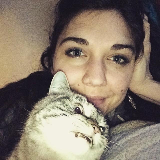 gato vampiro loki (11)