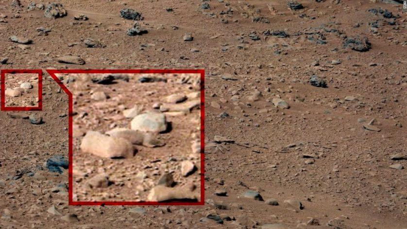Teóricos da conspiração acreditam que esse é um esquilo entre duas pedras