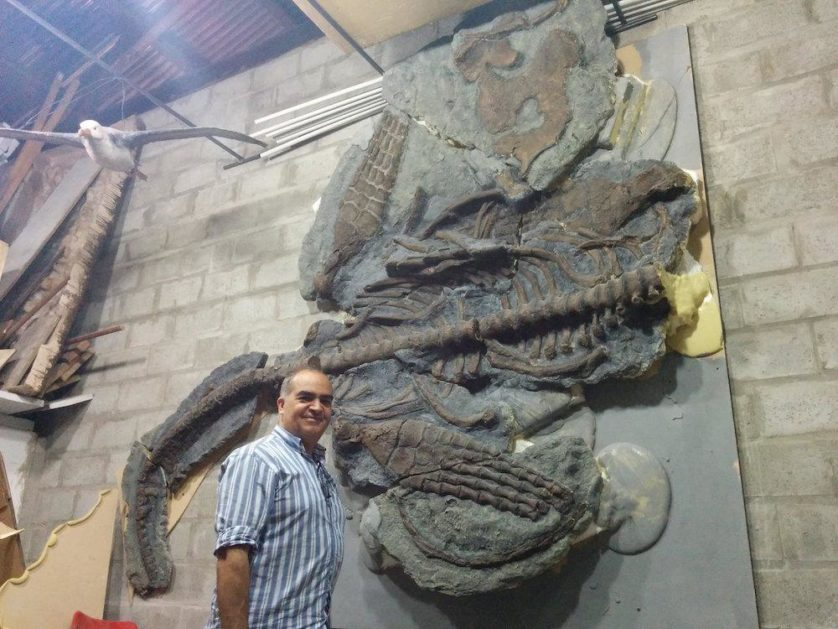 Fernando Novas ao lado de um molde de fóssil Plesiossauro