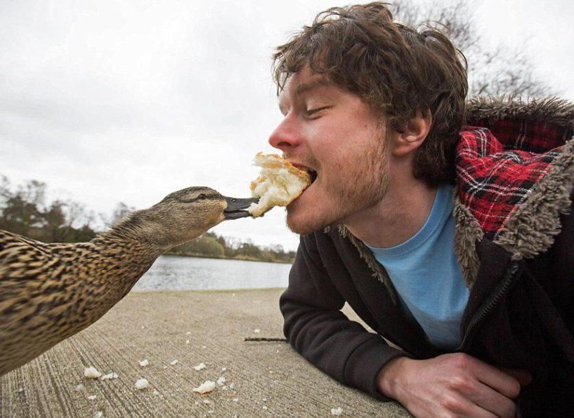 selfies engracadas com animais (1)