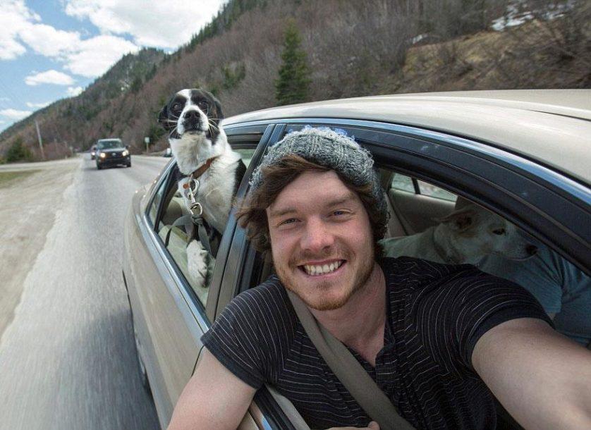 selfies engracadas com animais (10)