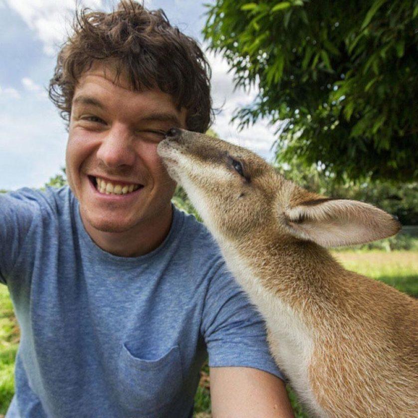 selfies engracadas com animais (12)