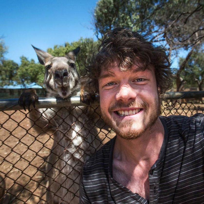 selfies engracadas com animais (4)