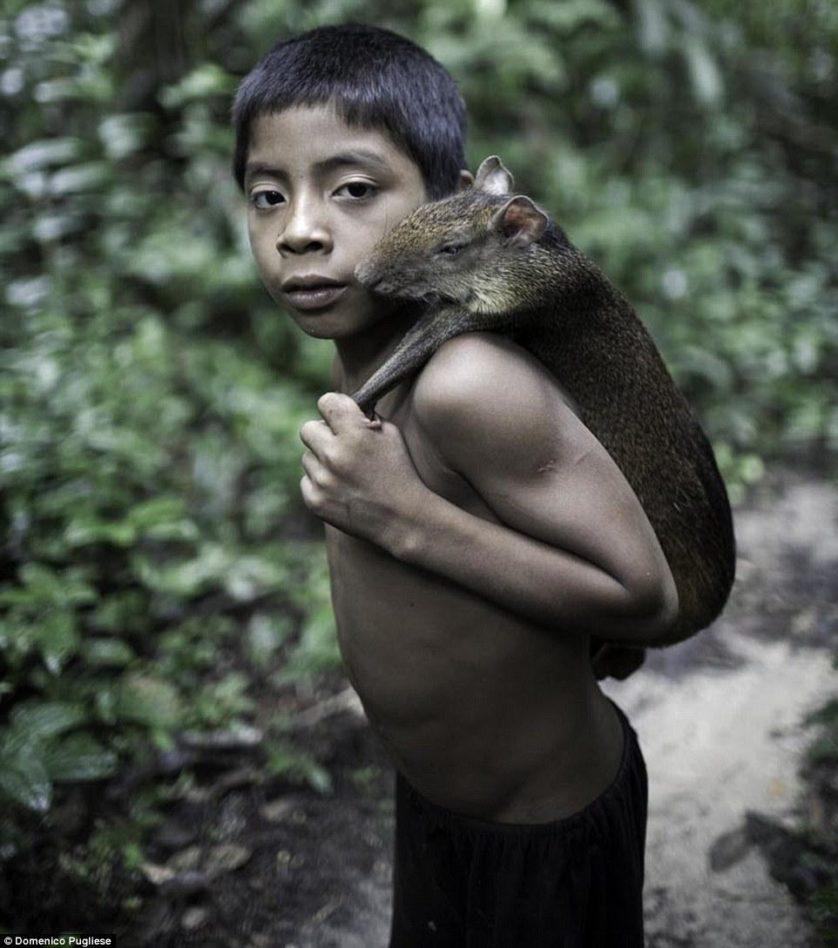 tribo amazonica awa (10)