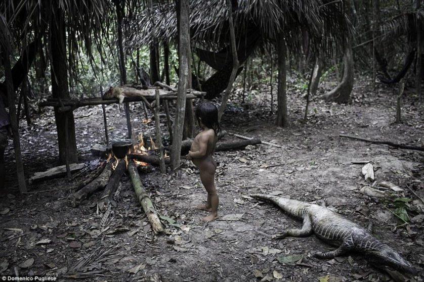 tribo amazonica awa (13)