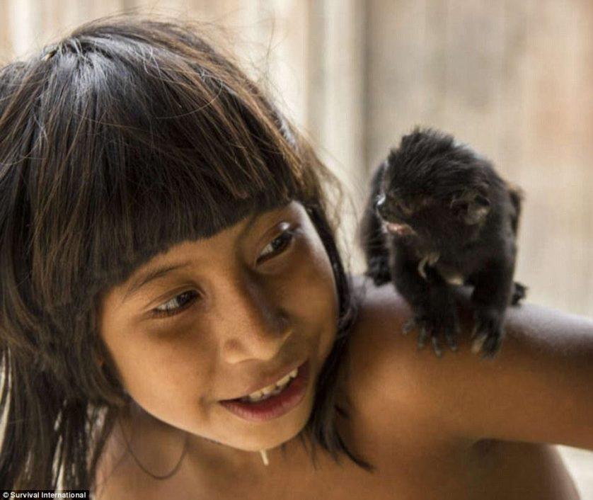 tribo amazonica awa (5)