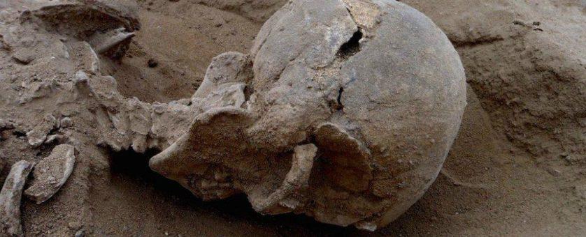 massacre seres humanos dez mil anos atras