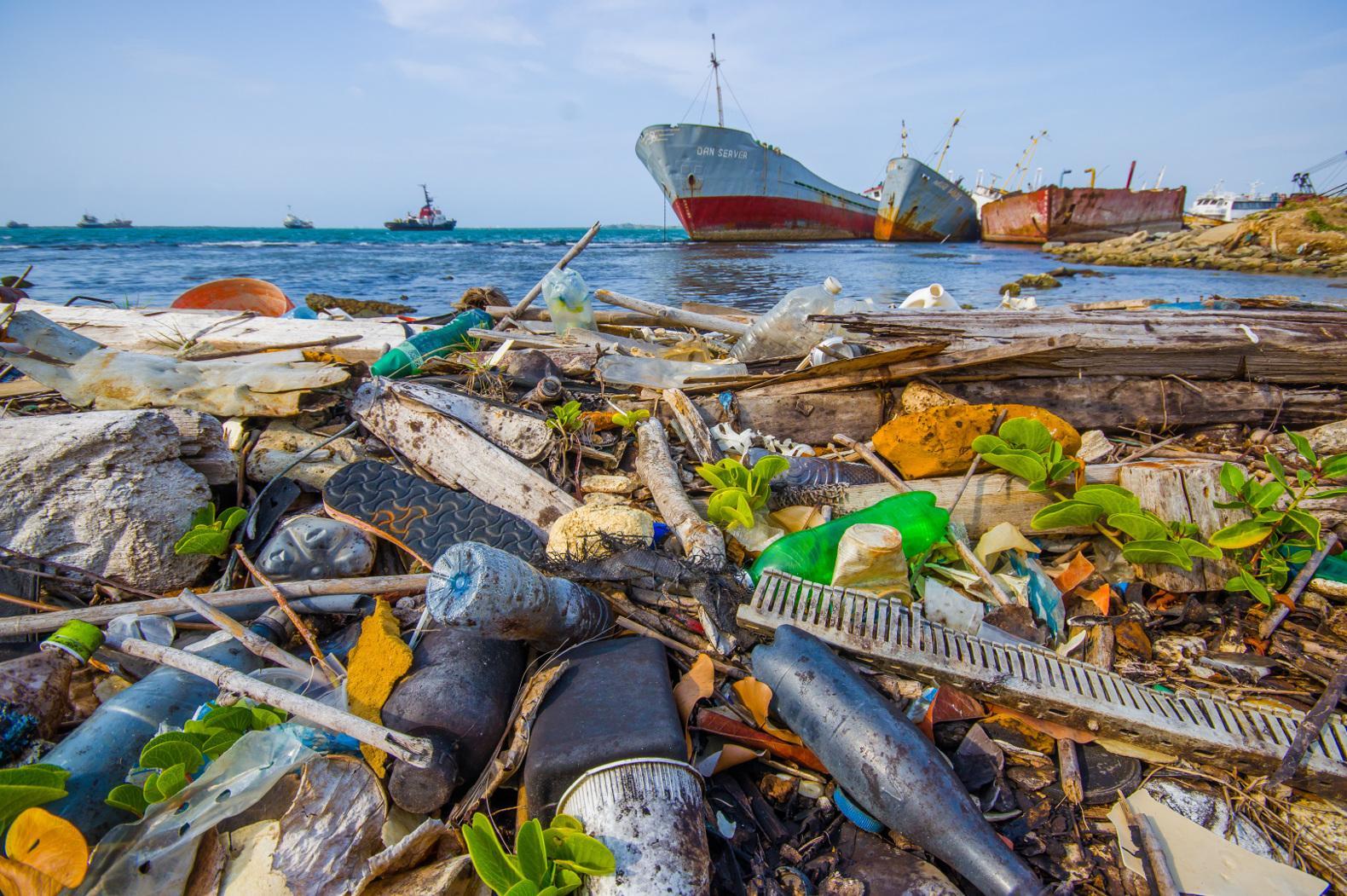 Resultado de imagem para plástico ameaça oceanos
