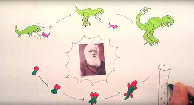 cientistas-testemunham-moleculas-evoluirem-em-tempo-real-2