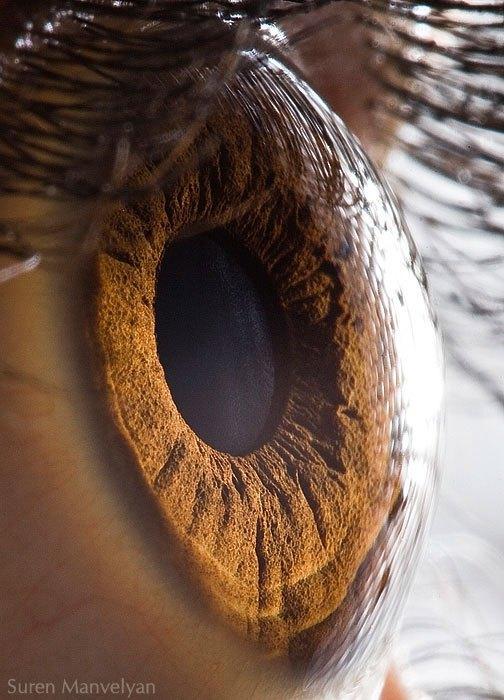 closes olho humano (11)