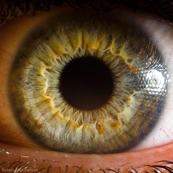 closes olho humano (12)