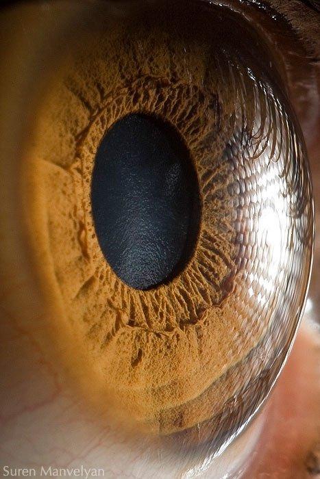 closes olho humano (13)