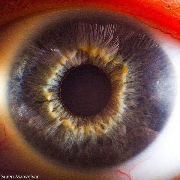 closes olho humano (14)